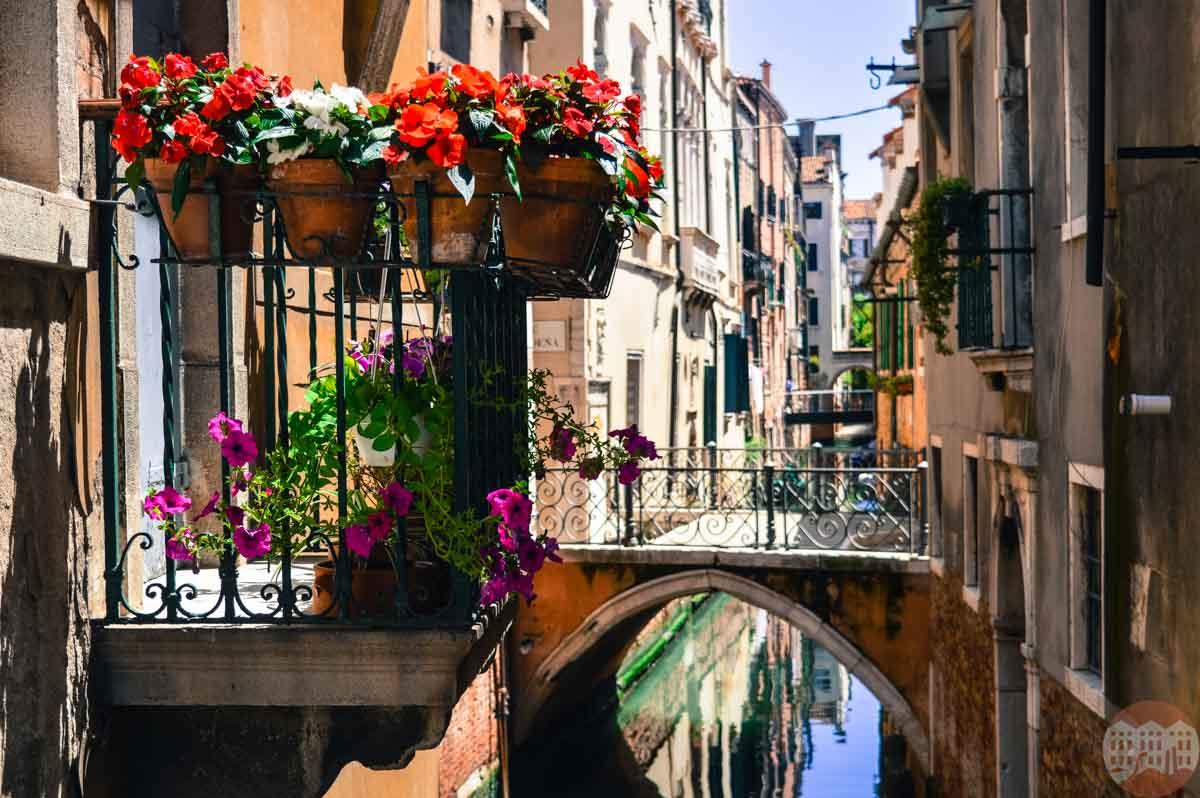 venezia estate
